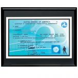 Deluxe Single-Sided Pilot License Plaque