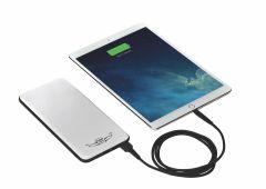 Large Flight Gear Backup Battery for iPad (20,000 mAh)