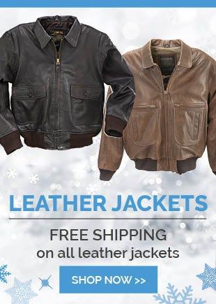 Free Shipping Leather Flight Jackets