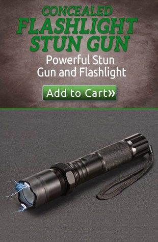 Concealed Flashlight Stun Gun