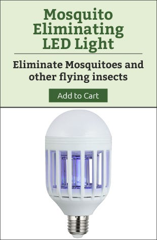 LED Mosquito Light
